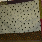 (Trunk Show, quilt made by Bonnie) This backing has kangaroo fabric!