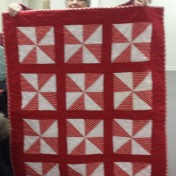 Meredith Willcox shows this cute quilt that she and Vel Pauls made together. Vel did the blocks and Meredith set it together.